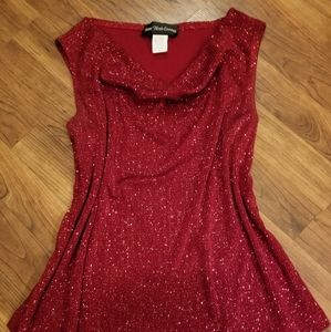 EUC- BEAUTIFUL SHIMMERING HOLIDAY RED COWL NECK